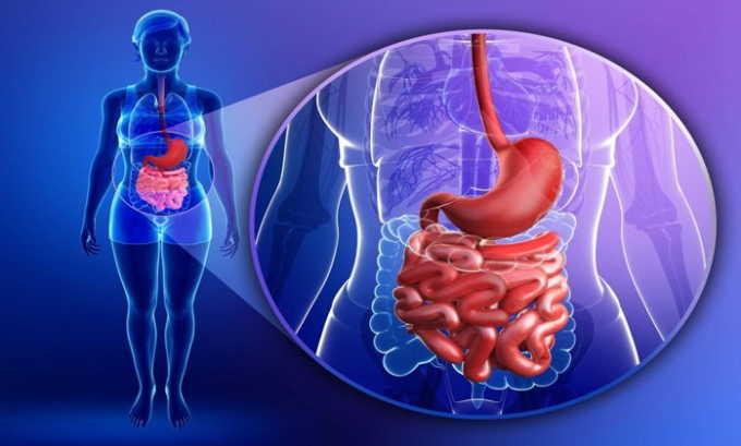 Патологии поджелудочной железы и печени являются фактором развития заболевания