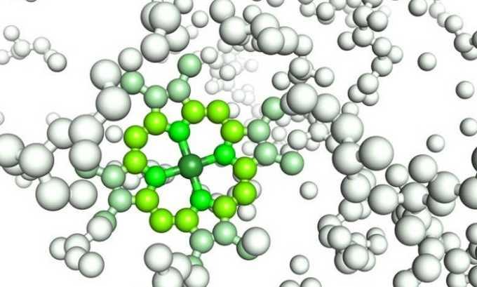 Употребление креветок помогает нормализовать баланс синтеза панкреатических ферментов