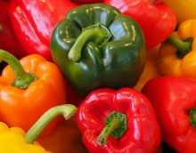 Можно ли болгарский перец при панкреатите?