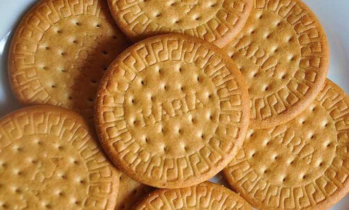 Печенье «Мария» можно есть при панкреатите