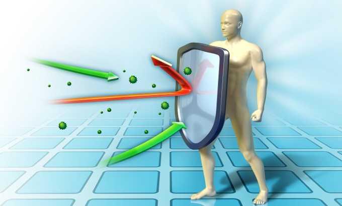 Благодаря богатому химическому составу слива благоприятно воздействует на все внутренние системы человеческого тела, укрепляет иммунитет и способствует ускорению выздоровления при панкреатите