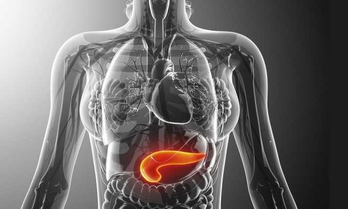 Белок помогает восстановить нормальную работу поджелудочной железы