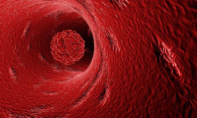 Ламинария выводит из организма шлаки и токсины, нормализует работу надпочечников, предотвращает образование тромбов