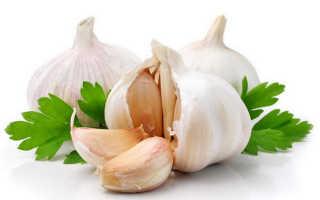 Полезен ли чеснок при панкреатите