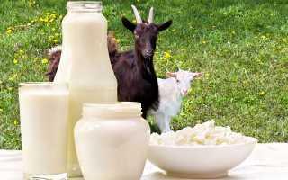 Можно ли пить козье молоко при панкреатите?
