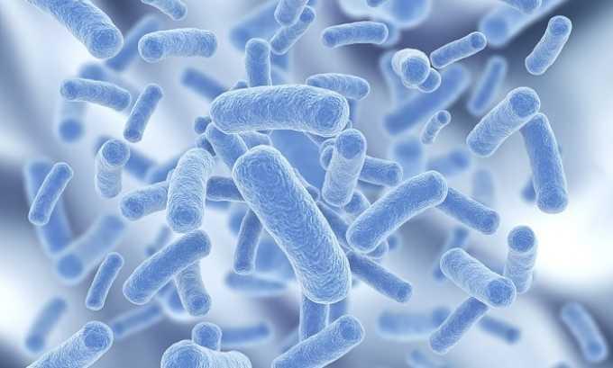 Лук оказывает противомикробное действие, уничтожая возбудителей бактериальных инфекций