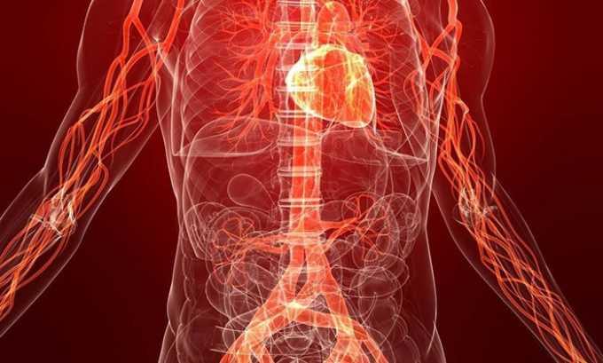 Нарушение кровообращения. Недостаточное поступление кислорода и питательных веществ приводит к развитию хронического воспалительного процесса в поджелудочной железе