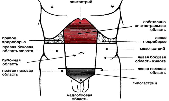 При остром панкреатите наблюдается интенсивный болевой синдром, который возникает в большинстве случаев в эпигастральной области