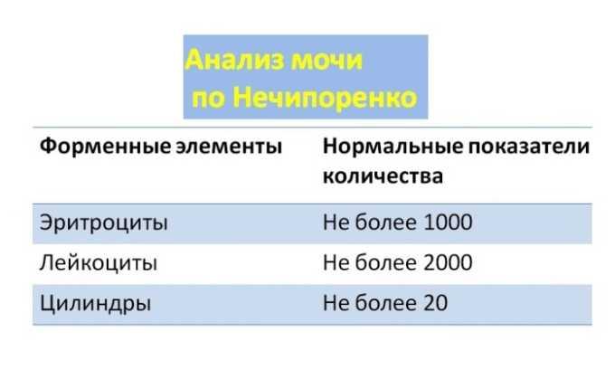 Анализ по Нечипоренко проводится в том случае, когда врачу нужна информация о сопутствующих заболеваниях мочевыводящих путей и почек