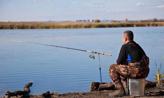 Выбирая рыбу для питания нужно помнить, что ее жирность зависит от времени лова и места обитания