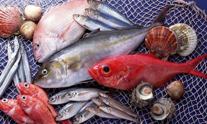 В рацион включают морскую рыбу