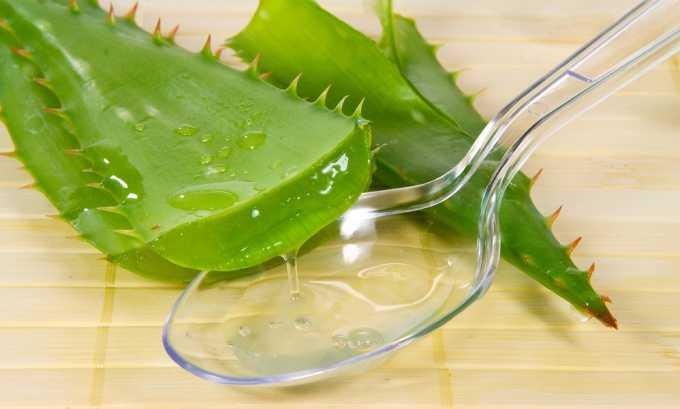 Мед для усиления лечебного действия на организм рекомендуют смешивать с соком алоэ