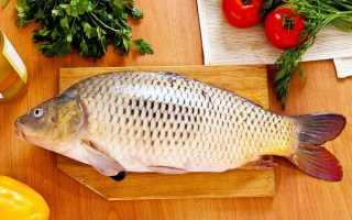 Какую рыбу можно при панкреатите?