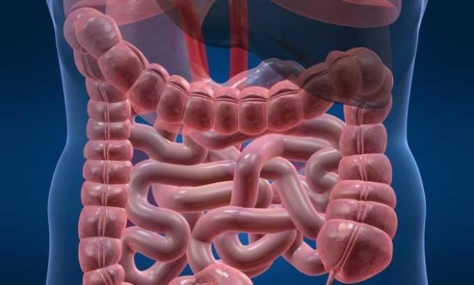 Клетчатка, содержащаяся в кожуре помидора, положительно влияет на перистальтику кишечника