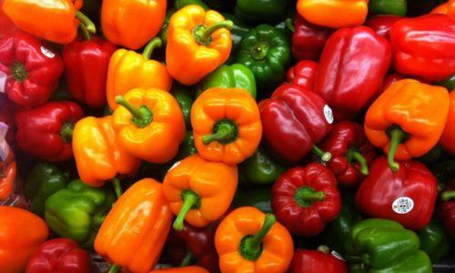 Болгарский перец при панкреатите не запрещается есть, поскольку он принесет больше пользы, чем вреда