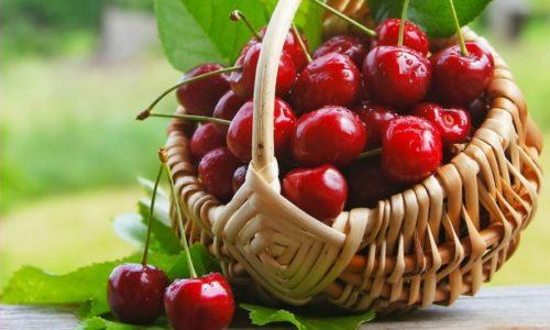 Черешня - любимое многими природное лакомство, которое издавна славится не только изысканным вкусом, но и многочисленными полезными свойствами. Однако мало кто знает, что эта сочная ягода имеет немало противопоказаний к употреблению