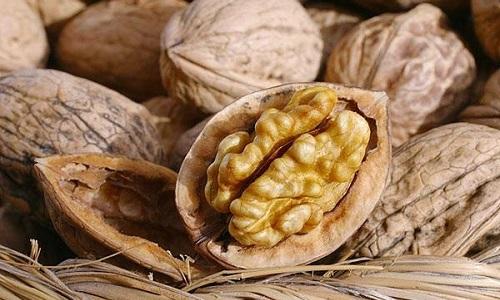 Грецкие орехи при панкреатите можно есть в небольшом количестве, учитывая особенности заболевания