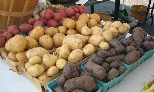 Лучшими сортами, в которых обнаружено максимальное содержание полезных веществ, являются овощи, имеющие яркую окраску: розового, красного или фиолетового оттенков