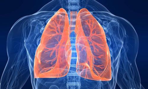 Паталогия выражается в поражении органов дыхания