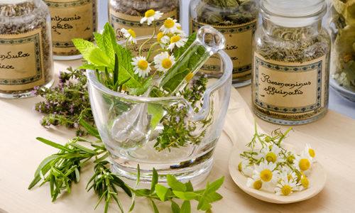 В состав травяных сборов могут входить все части растений - корни, листья и стебли, цветки и плоды