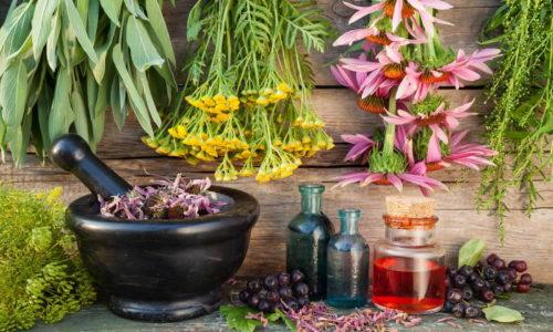 Дополнением к операции и лекарственной терапии панкреатита являются народные средства в виде травяных настоев, отваров и настоек