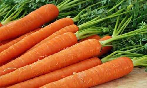 Морковь при панкреатите разрешена к употреблению, но существует ряд правил, которых следует придерживаться
