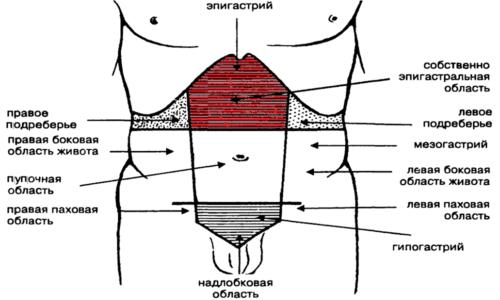 Главным признаком острого панкреатита являются характерные боли в области эпигастрия, отличающиеся высокой интенсивностью. Боль может быть тупой, ноющей, режущей и распирающей