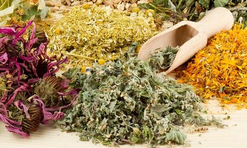 Фитотерапия и прием травяных отваров способны облегчить симптоматику патологии