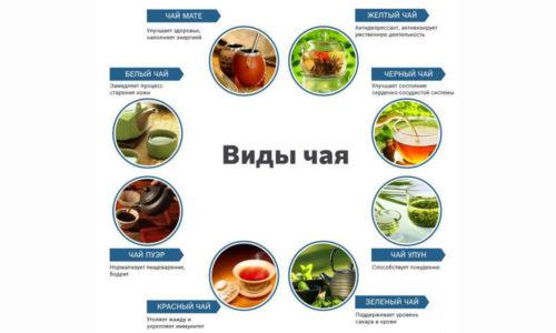 Обладая множеством полезных свойств, чай при панкреатите оказывает умеренный противовоспалительный, дезинфицирующий и противоотечный эффекты
