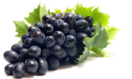 Виноград используется людьми для приготовления алкогольных напитков, соков и сухофруктов, любят употреблять в пищу эту ягоду и в свежем виде на десерт за ее приятный вкус