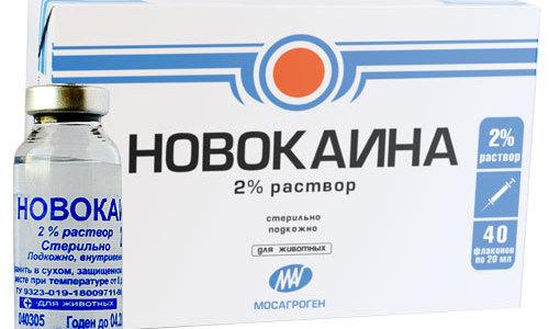 Новокаин или Прокаин - местный анестезирующий препарат, применяемый для эпидуральной анестезии, блокад, компрессов